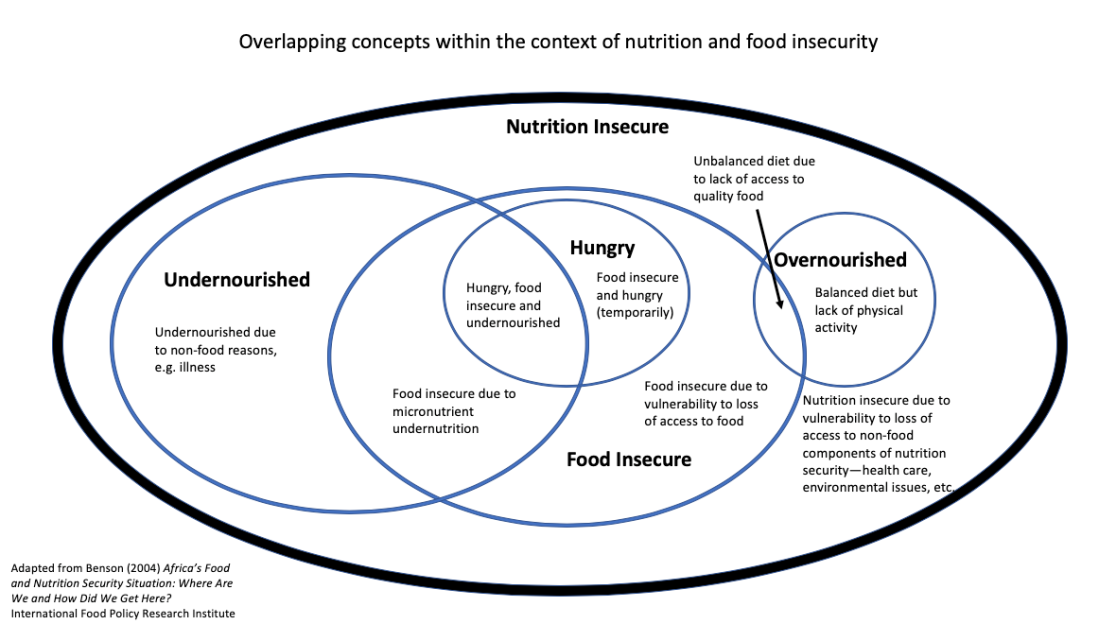 Overlapping Concepts Nutrition Food Security